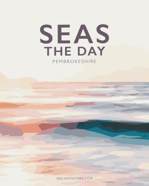 Seas the day quote poster
