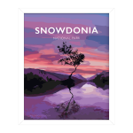 snowdonia lonely tree mountain poster travel vintage poster welsh north wales art