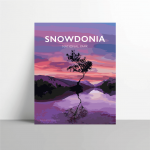 snowdonia lonely tree mountain poster travel vintage poster welsh north wales wall art